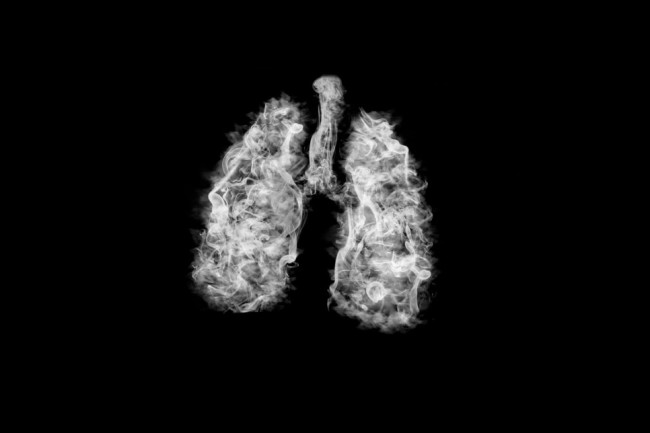 You Should Take Care of Your Lungs, They're Beautifully Complex