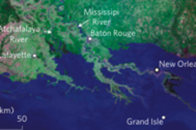 louisiana-wetlands.jpg
