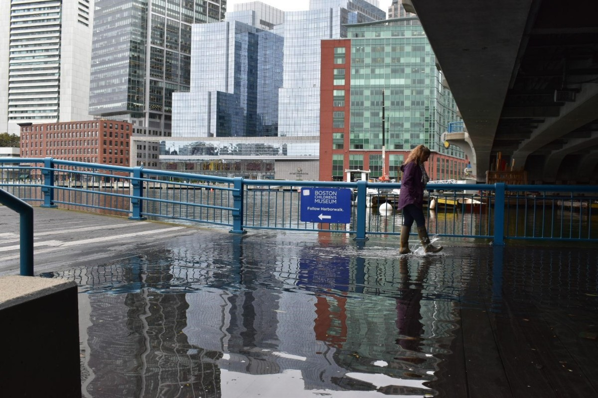Wicked High Tides: Citizen Scientists Plan for Sea-Level Rise
