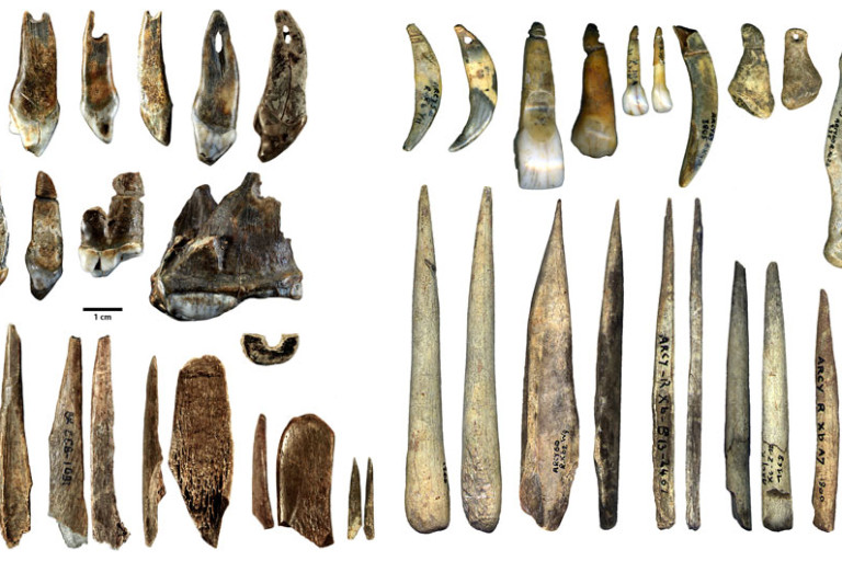 Humans and Neanderthals May Have Shared Jewelry Designs