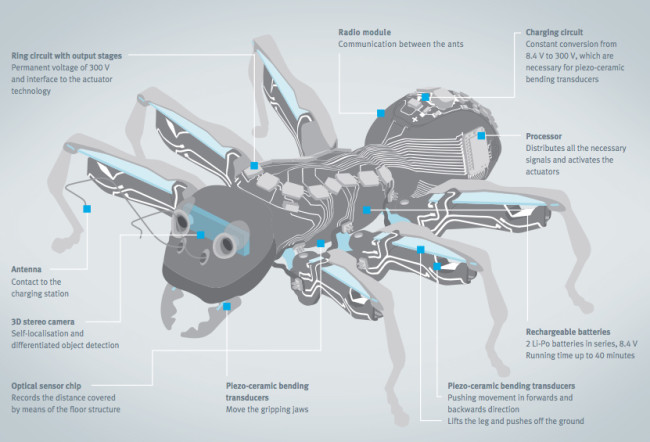 antrobots2.jpg