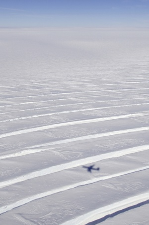 Pine Island Glacier Antarctica - Harbeck