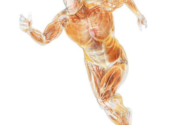 body running