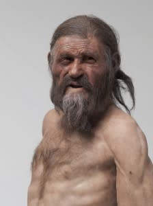 The new reconstruction of the Iceman as presented in the South Tyrolean Archaeology Museum showing the Iceman with brown eyes based on the genetic analysis.