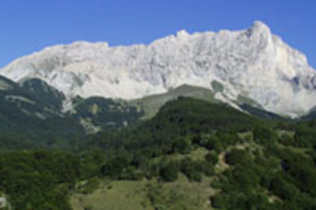 french-alps.jpg