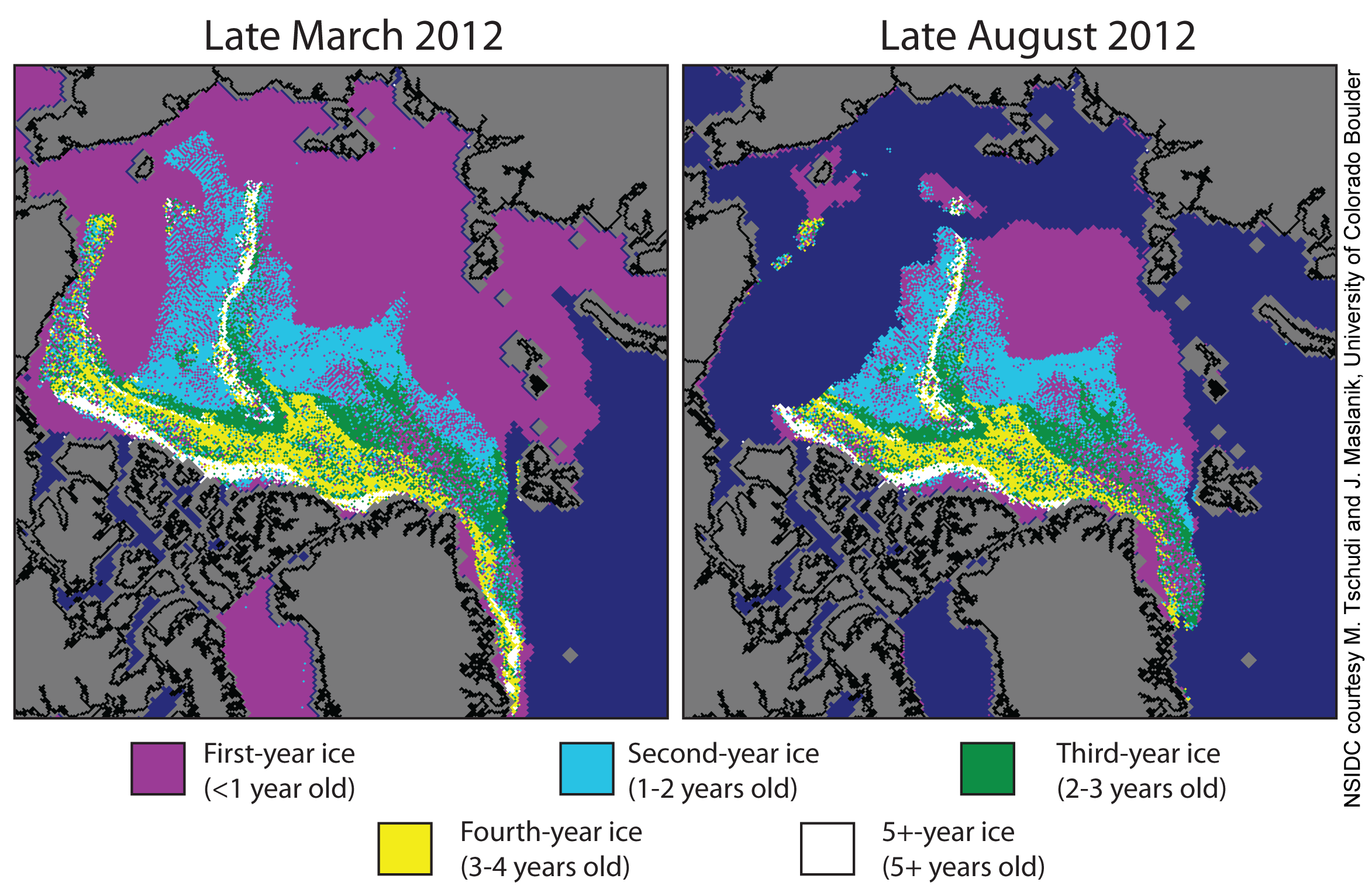 Multiyear-ice-decline.png