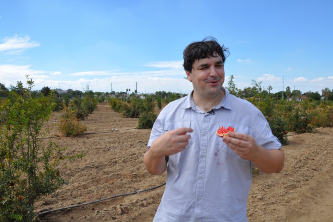 John Chater, foreground, stands with a chunk of pomegranate in his hand. Behind him is a grove of pomegranate trees.