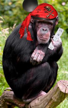 anth-chimp.jpg