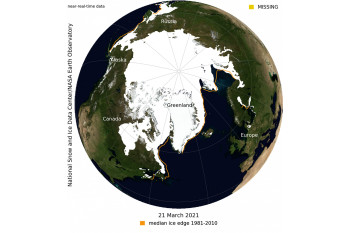 Winter Arctic Sea Ice Peaks at 7th Skimpiest on Record