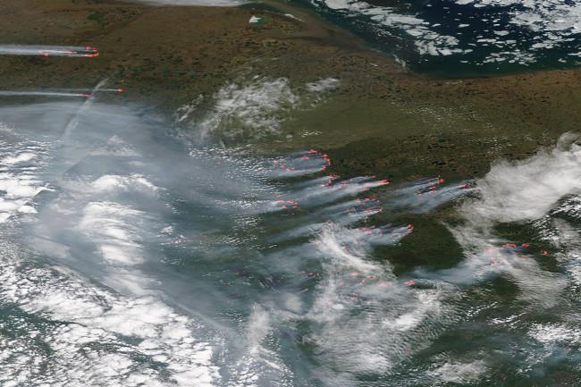 Siberian Wildfires - NASA