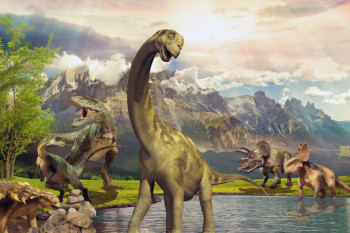 Did the Dinosaurs Live at the Same Time?