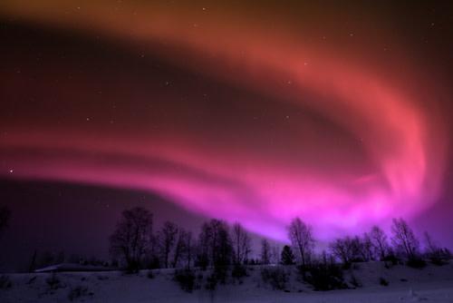Northern Lights Stock