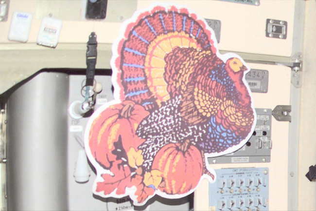 space-thanksgiving-turkey.jpg