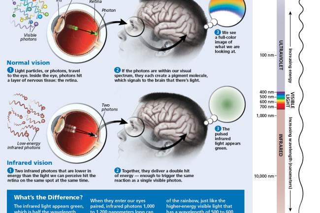 infrared-infographic.jpg