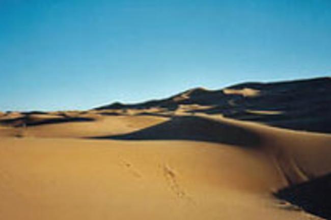 sahara-dune.jpg