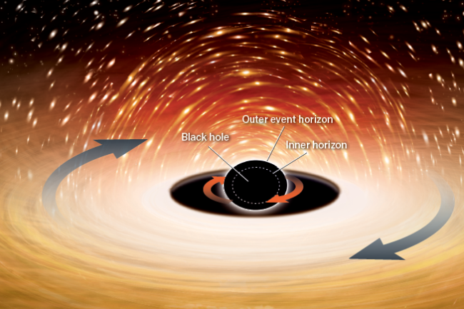Black hole horizons