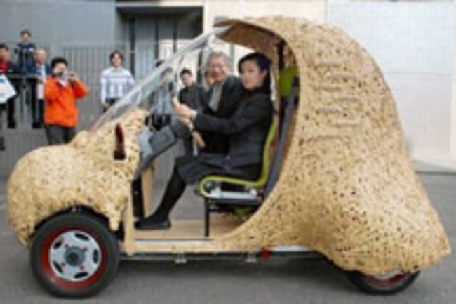 bamboo-carweb.jpg
