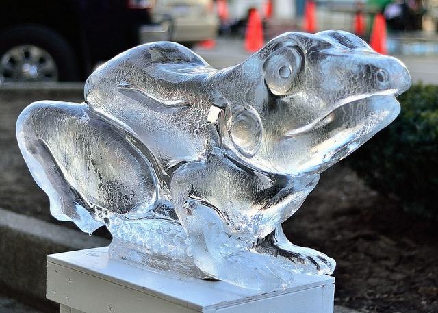 ice-frog.jpg