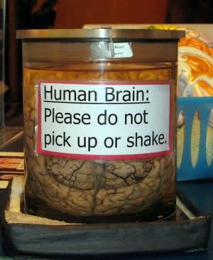 brain-use-e1303497750661.jpg