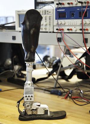 prosthetic.jpg