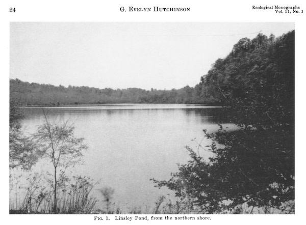 old-Linsley-pond600.jpg