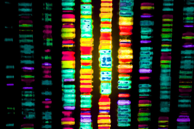 A DNA sequence. The first cell with a working artificial addition to its DNA has been created. (Credit: Gio.tto/Shutterstock)