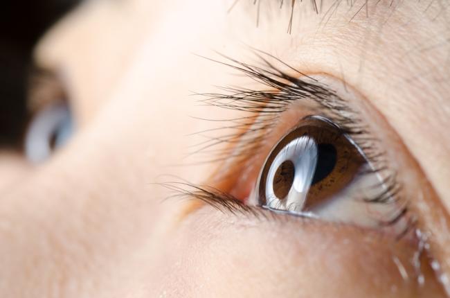pupil-close-up.png