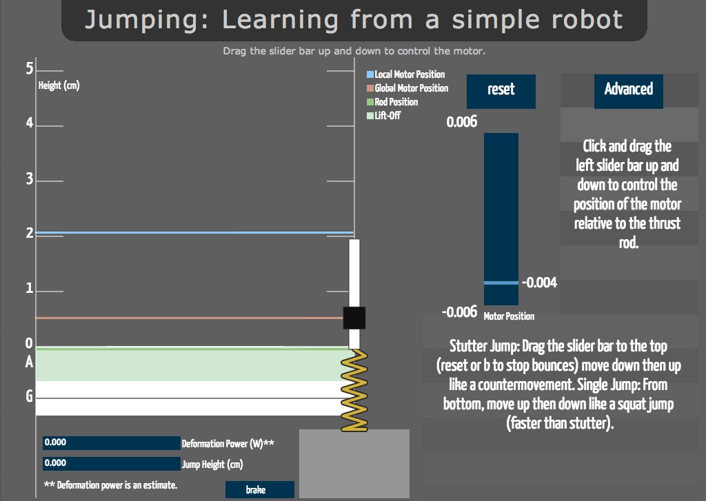 jump-model.jpg