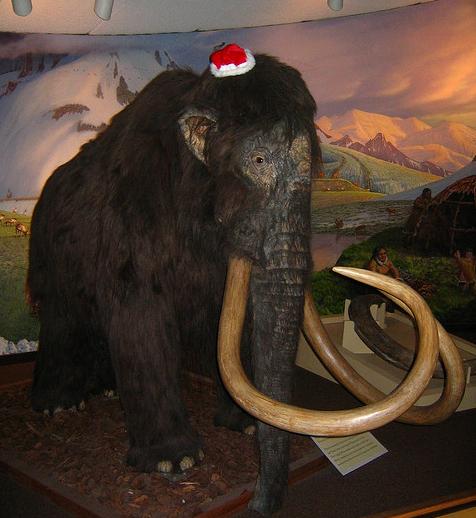 Mammoth_Hat.jpg