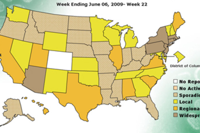 swine-flu-us-map.jpg