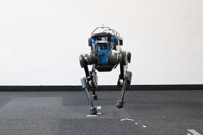 robot dog ANYmal