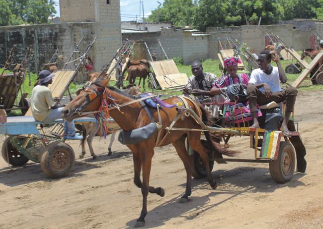 senegalese farming town