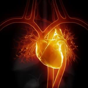 heart-300x300.jpg