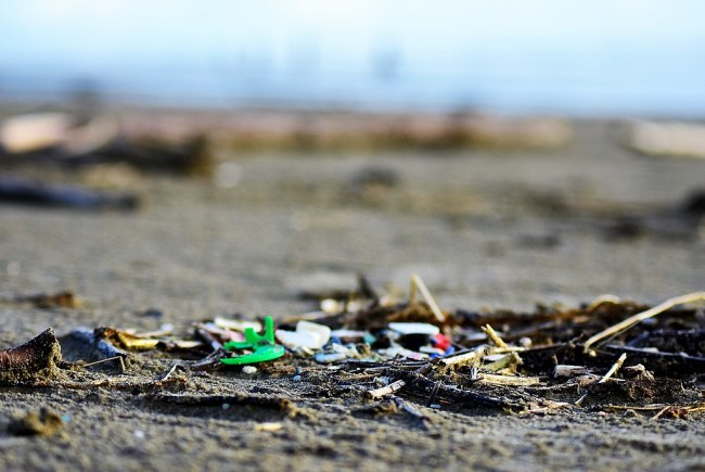 plastic pollution beach trash litter