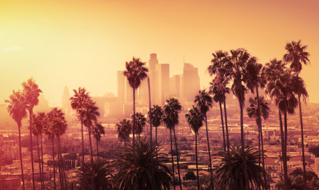 Los Angeles sunset pollution palm trees - shutterstock