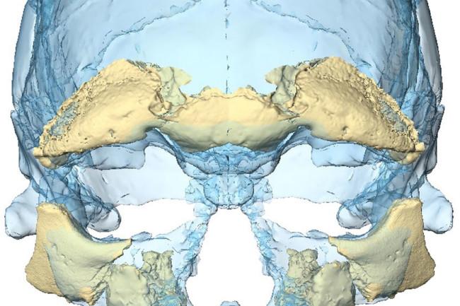 DSC-A0218_09-cropped.jpg