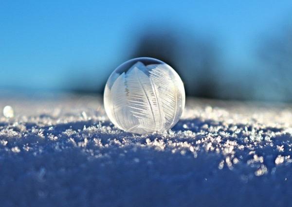 snowballhead.jpg