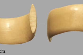 Ancient Proteins Reveal 6,000-year-old Ring Was Made From Deer Antler or Bone