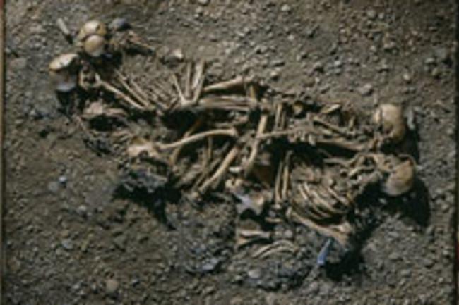 skeleton-family.jpg
