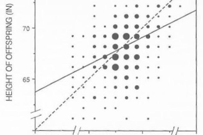 Galton-height-regress.jpg