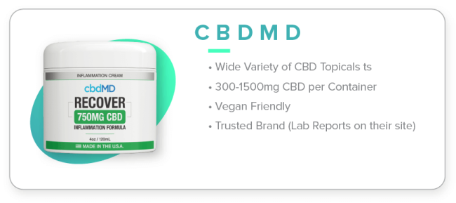 1 cbdMD Cream