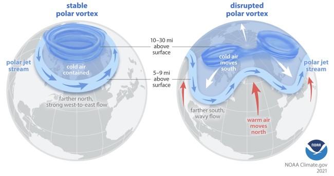 Polar Vortex and Polar Jet Stream