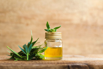 CBD Might Work as an Antibiotic to Treat Bacterial Infections