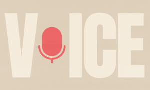Voice of the Customer Survey Template