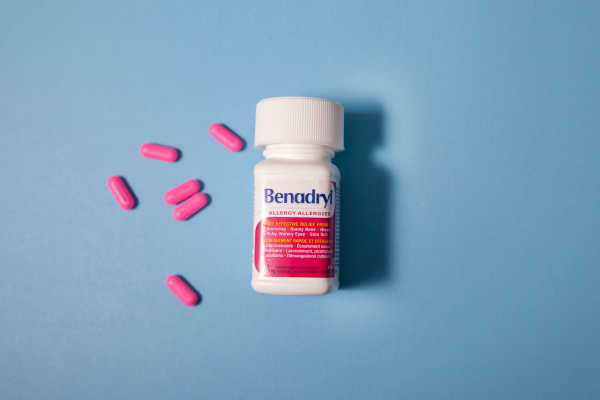 Benadryl for Cats: What You Need to Know