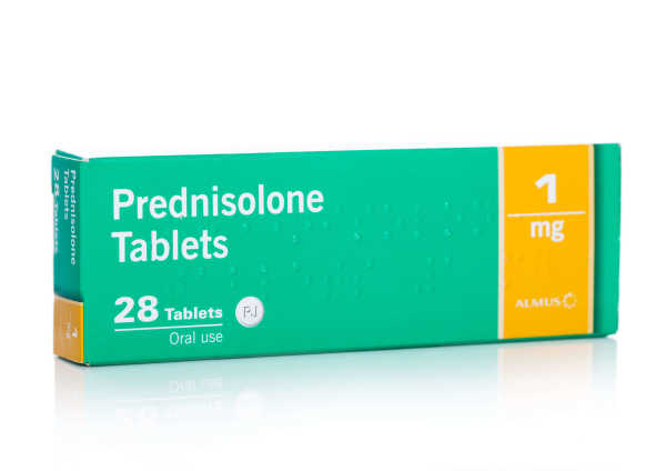 Prednisone for Dogs: Pros & Cons