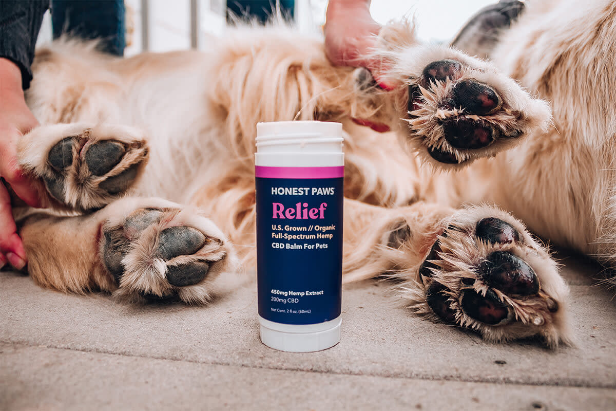Honest Paws Relief Pet Balm contains CBD to help soothe your dog's paws.
