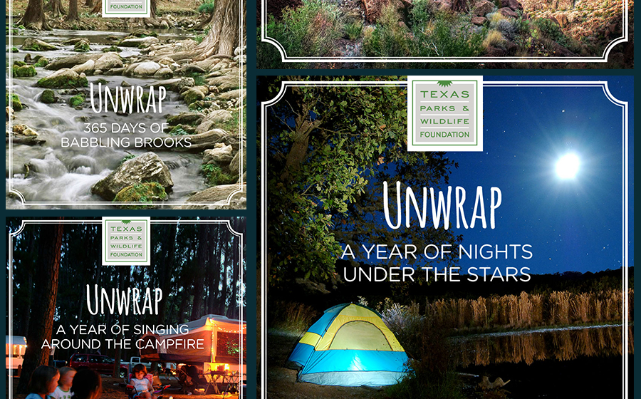 Springbox Concepting Execution Texas Parks & Wildlife Unwrap
