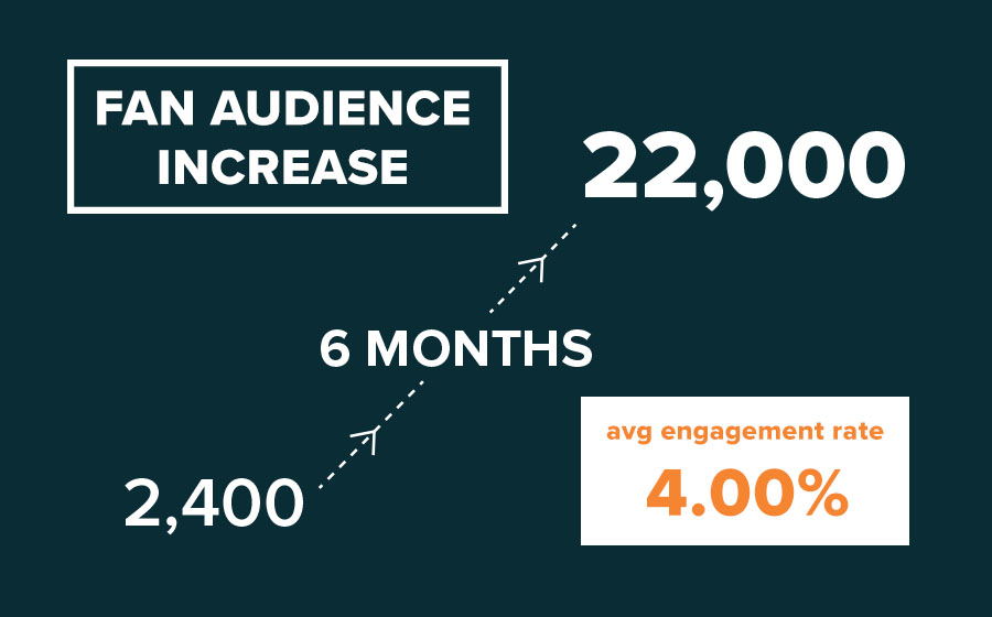 Springbox Social Strategy Primizie Audience Increase