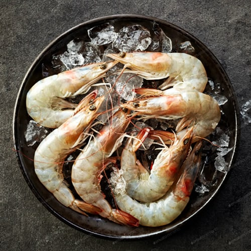 A plate of prawns on ice